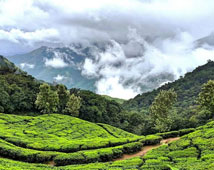 Munnar Travel Package