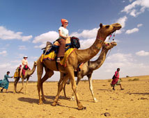 Camel Safari Holidays